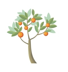 Tree orange isolated on white vector