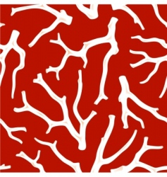 coral seamless texture vector image