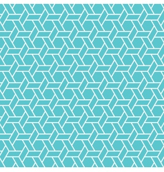 Caning pattern background vector