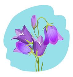 Viola violet flowering plant realistic vector