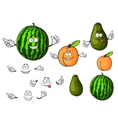 Cartoon watermelon avocado and apricot fruits vector