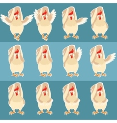 Set of flat white rooster icons vector