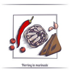 Herring in marinade and with bread vector