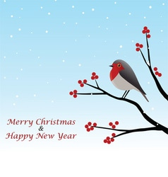 Christmas greeting with red robin on branch vector