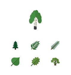Flat icon bio set of alder spruce leaves park vector