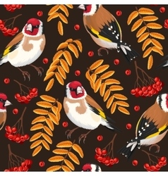 Seamless goldfinch and rowan vector