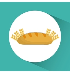 Bread wheat ears bakery icon graphic vector