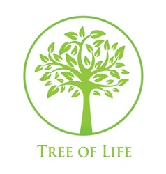 Symbol of the tree of life vector