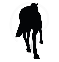 Horse silhouette in parade walk pose vector