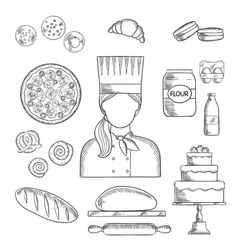 Baker profession and pastry sketched icons vector