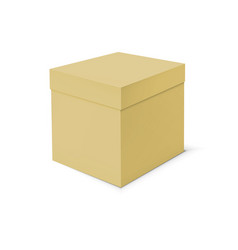 Blank cardboard box template on white background vector