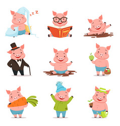 funny little pigs in different situations set vector image