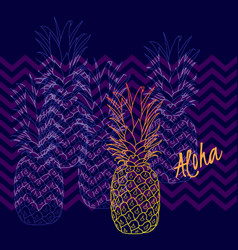 pineapple poster hand drawn vector image