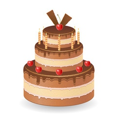 cake 02 vector image vector image