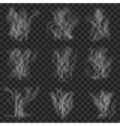 Set of translucent white smoke vector image