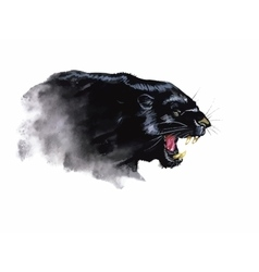 Panther hand painted watercolor vector