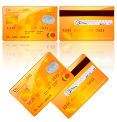 credit card vector image