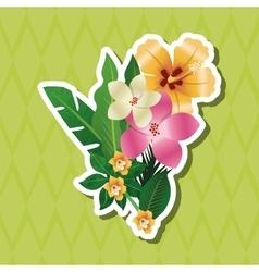 Tropical design flower concept nature icon vector