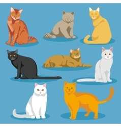 Cute cartoon kitties or cats set vector