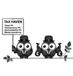 Tax haven vector