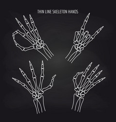 Thin line skeleton hand gestures vector