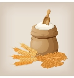 A bag of flour and a shovel wheat ears of wheat vector image