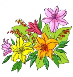 Flower background lily vector