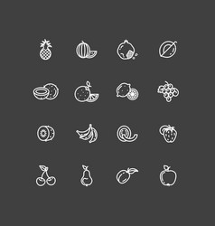 white fruits thin line icons set vector image vector image