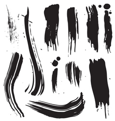Splat brush vector