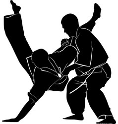 kyokushinkai karate vector image