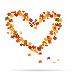 The heart of the autumn leaves vector image vector image