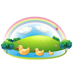 Three rubber ducks near the hill vector image