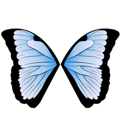 Butterfly wings vector