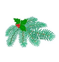 Christmas decoration branch of spruce and holly vector