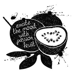 Black and white of passion fruit silhouette vector