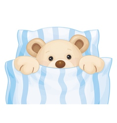 bear bed boy vector image