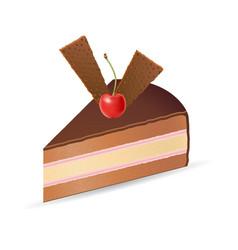 cake 04 vector image