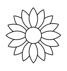cute sunflower decorative icon vector image vector image