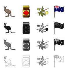 Kangaroo apple sauce chutney australian acacia vector
