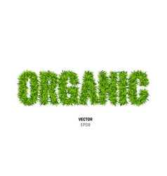 Organic made of green grass vector