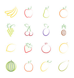set of outlines of fruit vector image