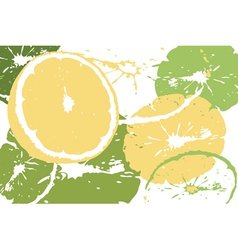 Citrus abstract backdrop vector