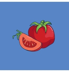 Cartoon style tomato vector image vector image