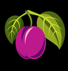 Purple simple plum with green leaves ripe sweet vector
