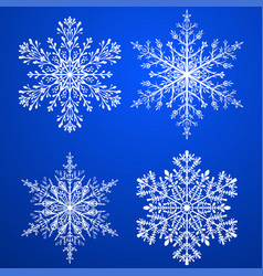 Set of christmas snowflakes vector