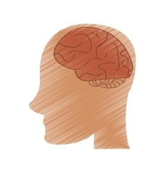 Drawing profile head brain idea imagination vector