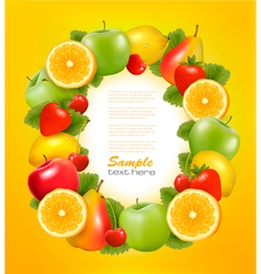 Fresh fruit in frame vector