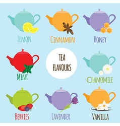 Tea flavours types vector