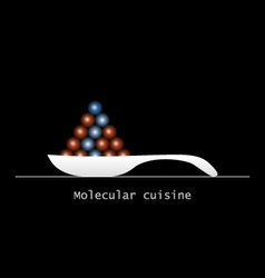 Molecular food balls on ceramics spoon vector image vector image