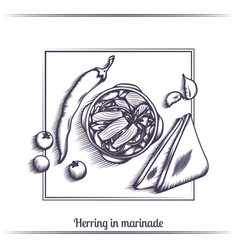 Herring in marinade and with bread black vector